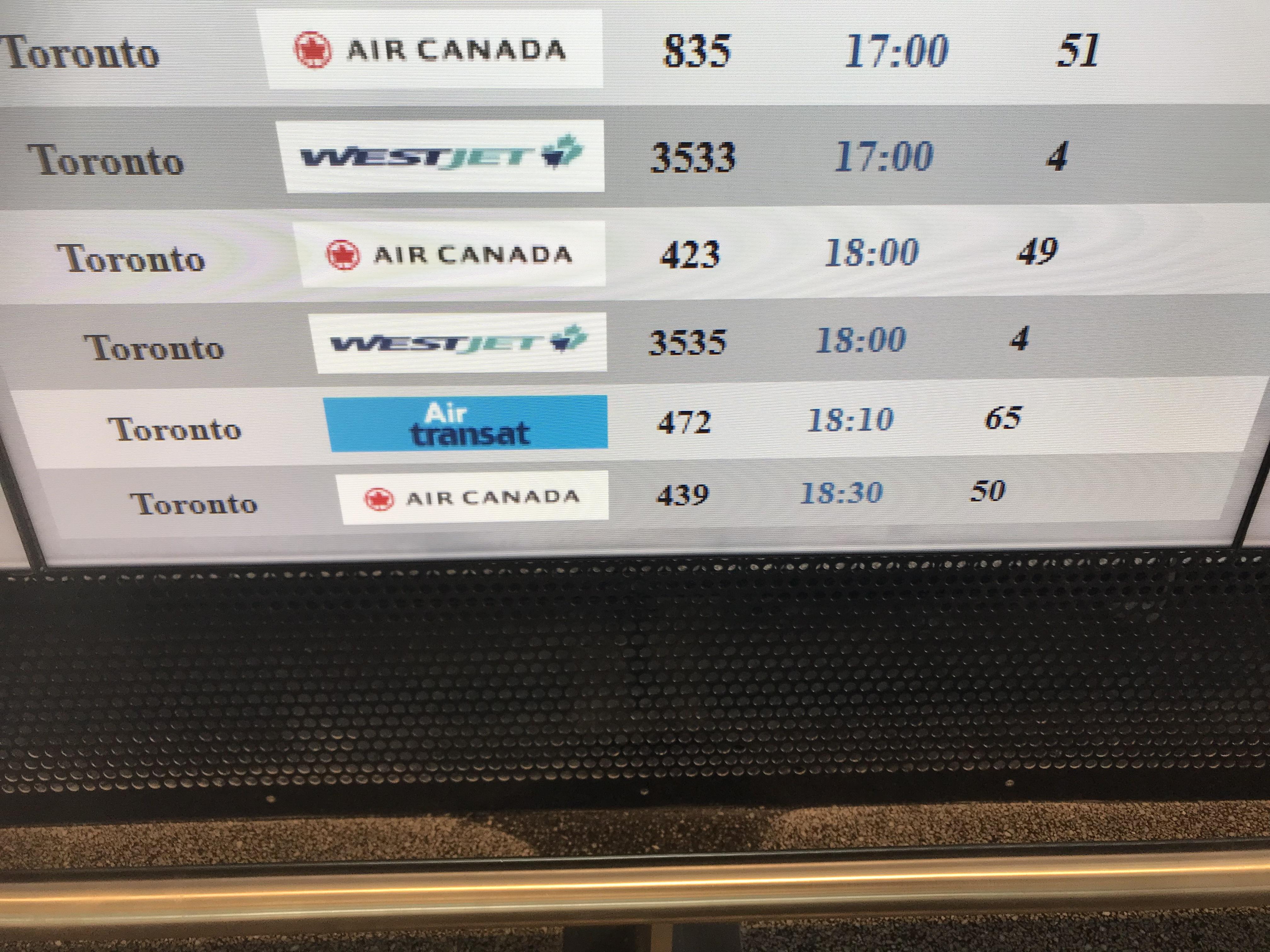 【航空会社レビュー⑫】カナダ エアトランサット 検索しても事故の情報ばっかり?