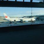 【JAL】日本航空/ビジネスクラスのインド路線 食事・サービス・座席を徹底紹介!!成田-ニューデリー路線を解説!!